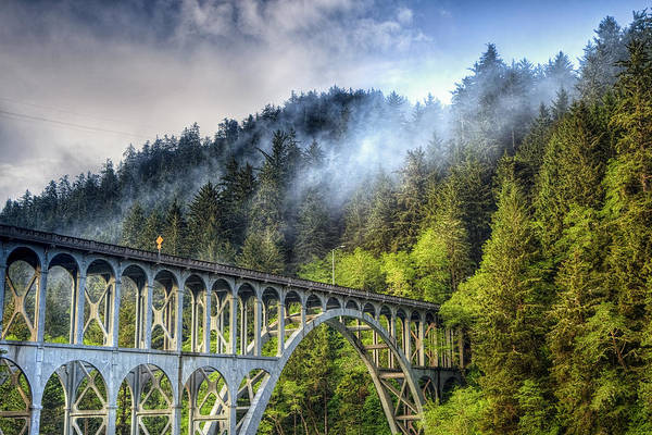 Elevated Wall Art - Photograph - Bridge Into The Woods by Andrew Soundarajan