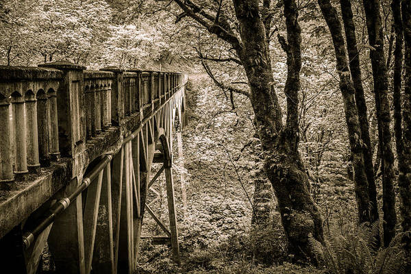 Photograph - Bridge Into Your Dreams by Wes and Dotty Weber