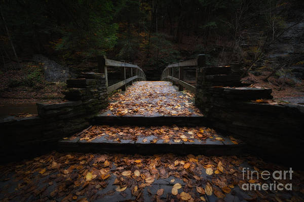 Dreary Photograph - Bridge Of Gold by Michael Ver Sprill
