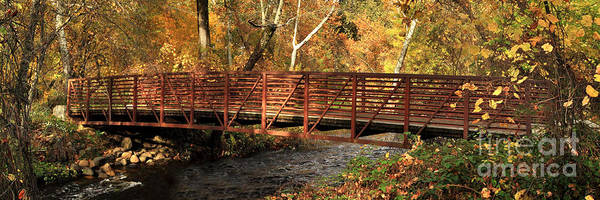 Wall Art - Photograph - Bridge On Big Chico Creek by James Eddy