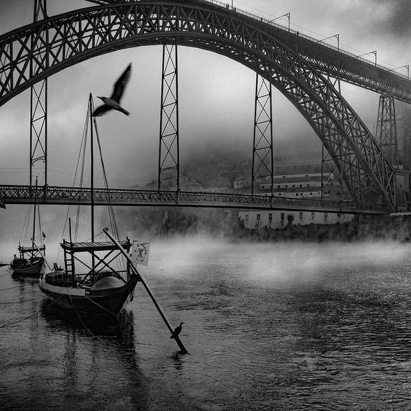 Wall Art - Photograph - Bridge Over Douro by Fernando Jorge Gon?alves