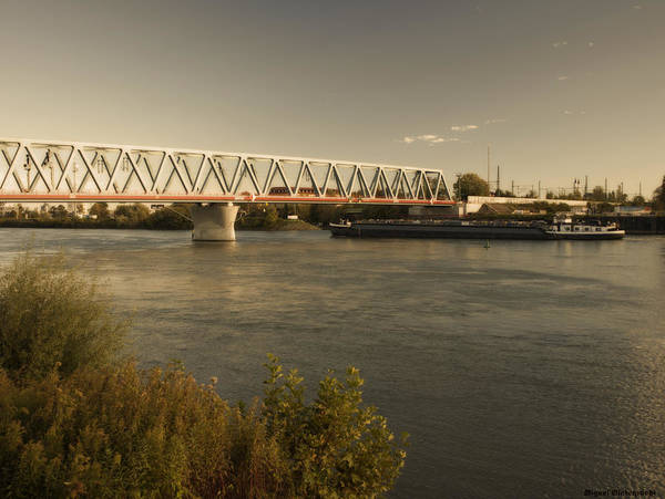 Photograph - Bridge Over Rhein River by Miguel Winterpacht