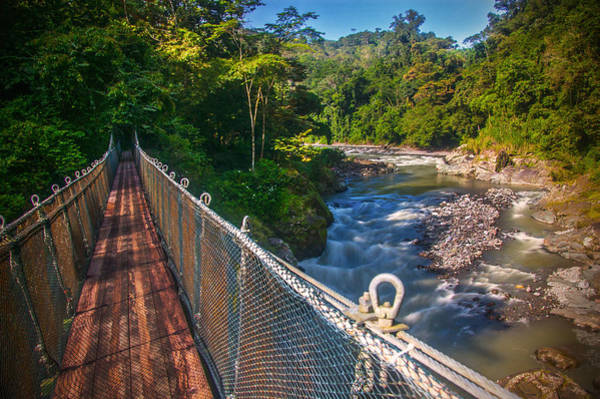 Photograph - Bridge Over The Pacuare by Owen Weber