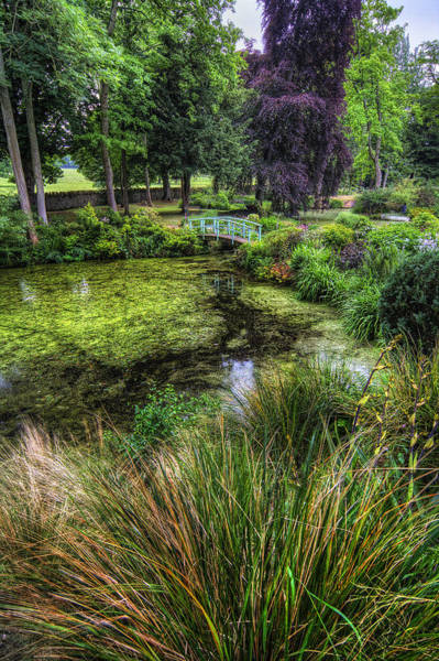 Photograph - Bridge Over The Pond by Ian Mitchell