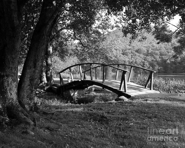 Photograph - Bridge To Nowhere  2 by Mel Steinhauer