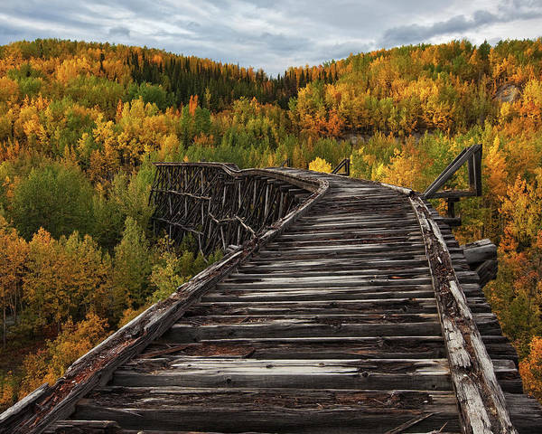 Foliage Photograph - Bridge To Nowhere... by Doug Roane