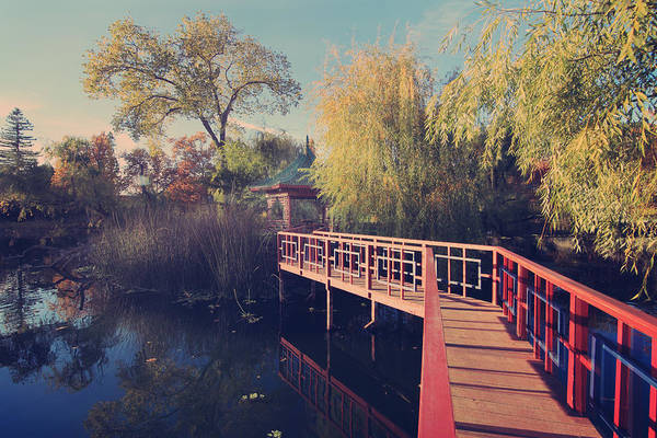 Chateau Photograph - Bridge To Zen by Laurie Search