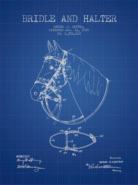 Bridle Wall Art - Digital Art - Bridle Halter Patent From 1920 - Blueprint by Aged Pixel