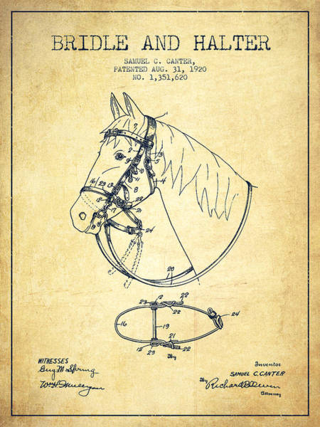Bridle Wall Art - Digital Art - Bridle Halter Patent From 1920 - Vintage by Aged Pixel
