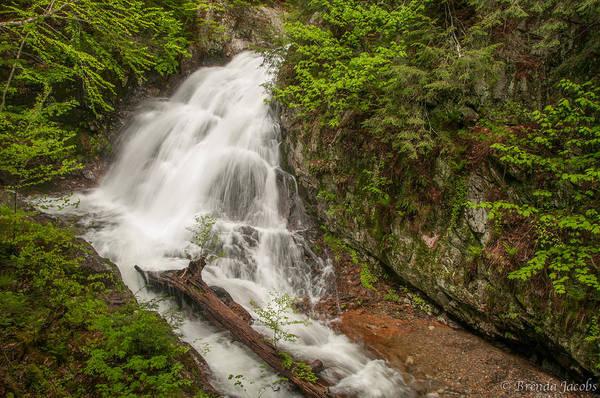 Photograph - Bridle Veil Falls by Brenda Jacobs