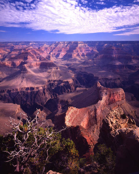 Photograph - Bright Angel Point by Ray Mathis