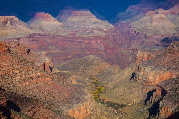 Photograph - Bright Angel To Plateau Point by Ed Gleichman