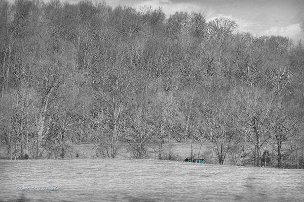 Photograph - Bright Blue Shed - Selective Color by Paulette B Wright