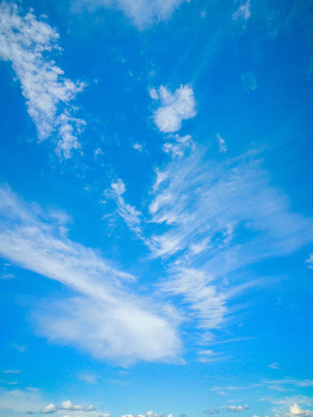 Photograph - Bright Blue Sky  by Roxy Hurtubise