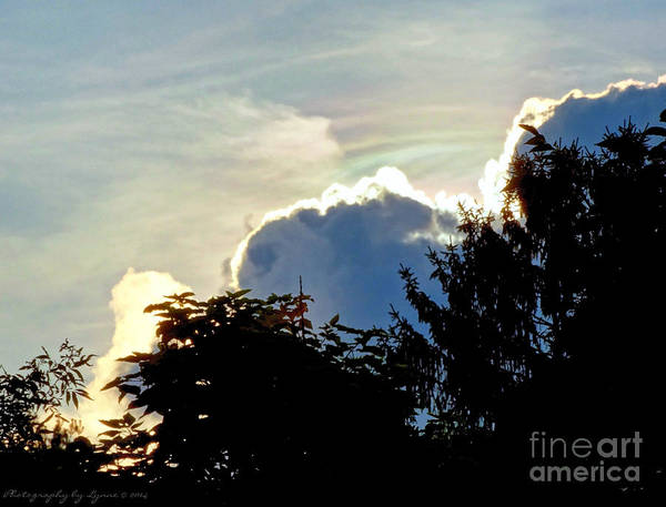 Photograph - Bright Clouds by Gena Weiser