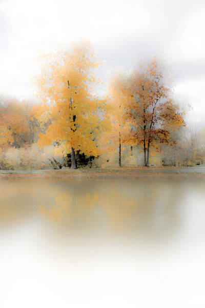 Photograph - Bright Fall Water by Michael Arend
