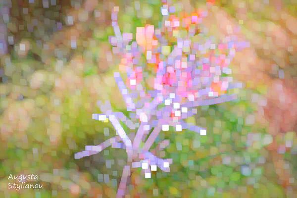 Digital Art - Bright Flower by Augusta Stylianou