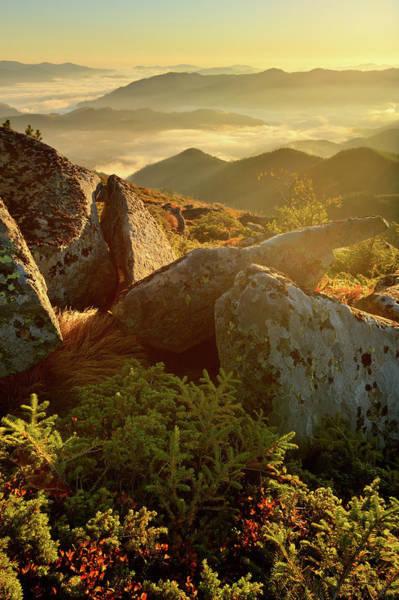 Orange Lichen Photograph - Bright Morning Landscape In Mountains by Rezus