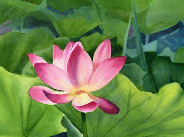 Pink Lotus Wall Art - Painting - Bright Pink Lotus Blossom by Sharon Freeman
