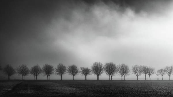 Wall Art - Photograph - Brighten by Christophe Staelens