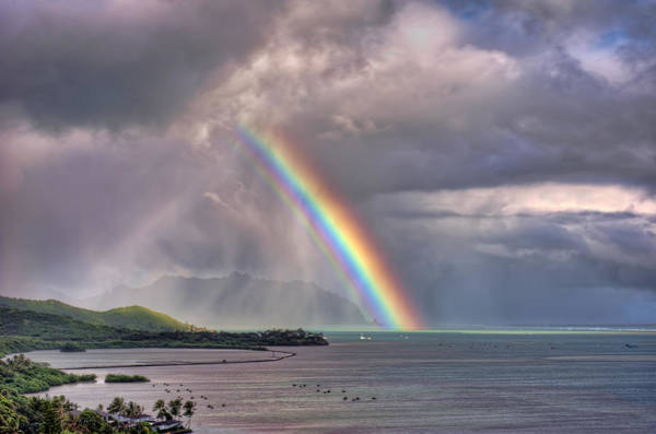 Photograph - Brilliant Rainbow by Dan McManus