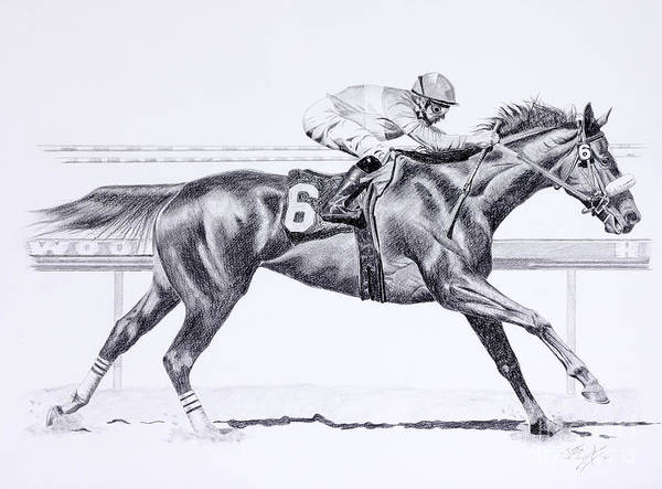 Equestrian Drawing - Bring On The Race Zenyatta by Joette Snyder
