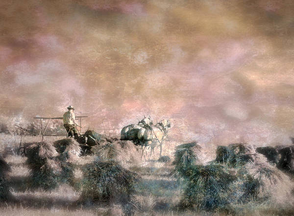 Photograph - Bringing In The Sheaves II by William Beuther