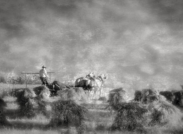 Photograph - Bringing In The Sheaves  by William Beuther