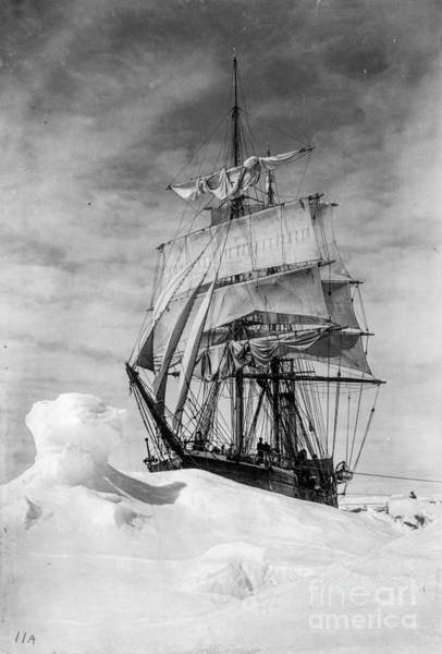 Photograph - British Antarctic Expedition by Russell Brown