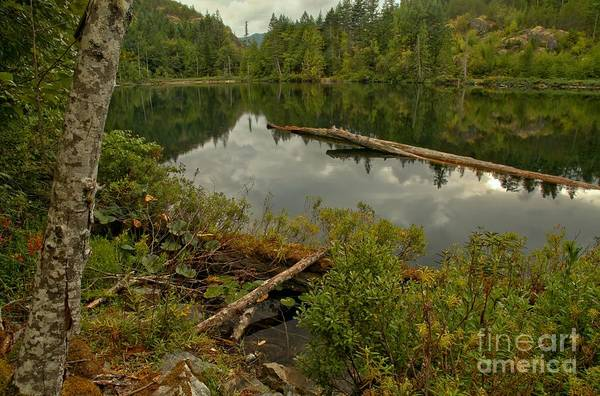 Photograph - British Columbia Starvation Lake by Adam Jewell