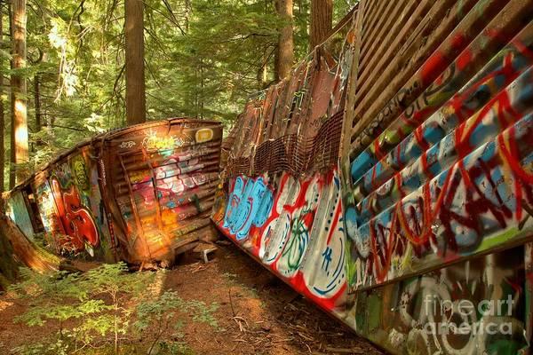 Photograph - British Columbia Train Wreck Box Cars by Adam Jewell