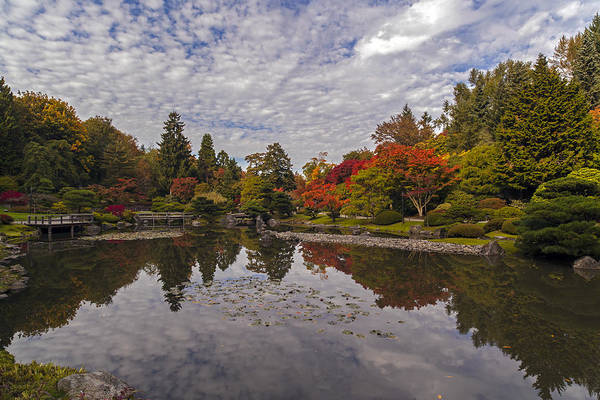Arboretums Photograph - Broad Skies And Fall Colors by Mike Reid