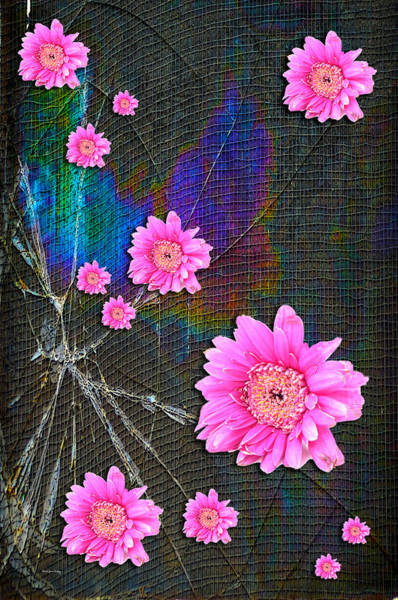 Photograph - Broken Dreams by Randi Grace Nilsberg