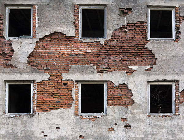 Old Wall Art - Photograph - Broken Windows by Michal Boubin