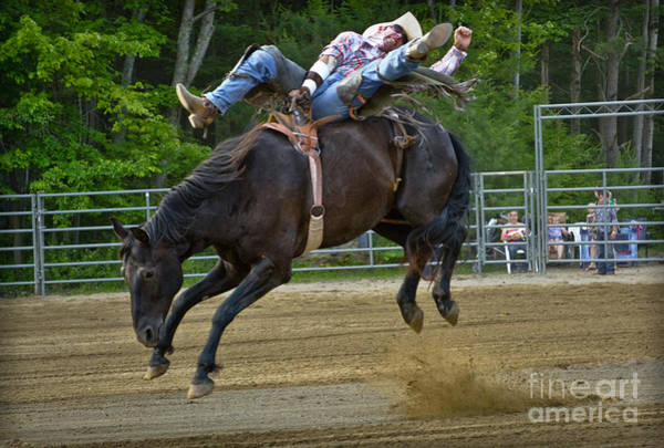 Mission Viejo Photograph - Bronco Cowboy by Gary Keesler