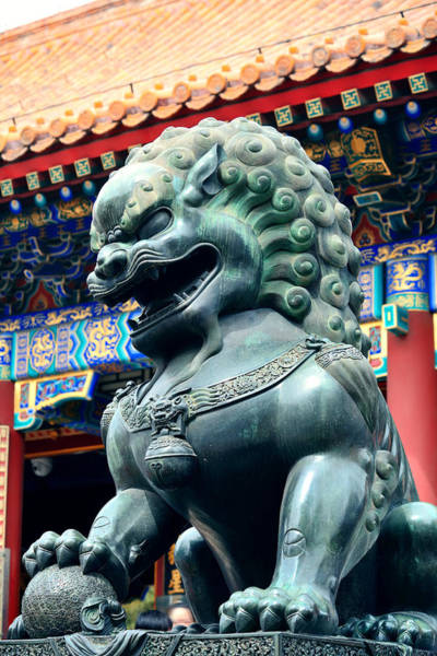 Photograph - Bronze Lion Statue by Songquan Deng