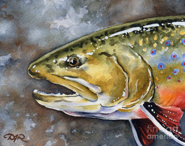 Trout Watercolor Wall Art - Painting - Brook Trout by David Rogers