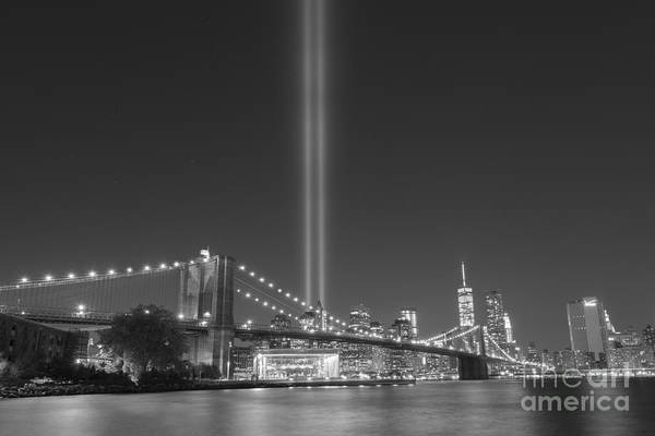 Liberty Bridge Photograph - Brooklyn Bridge At Night Bnw  by Michael Ver Sprill