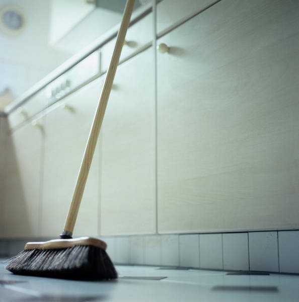 Broom Photograph - Broom by Cristina Pedrazzini/science Photo Library