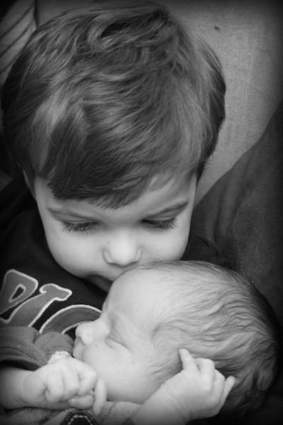 Photograph - Brotherly Love by Kelly Hazel
