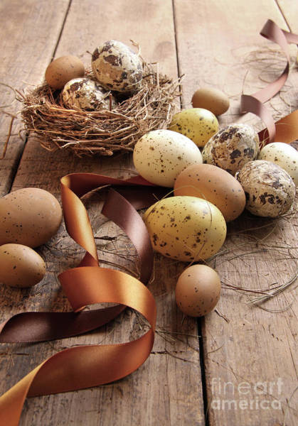 Photograph - Brown And Yellow Eggs With Ribbons For Easter by Sandra Cunningham