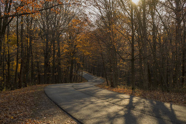 Photograph - Brown County State Park Nashville Indiana Road by David Haskett II