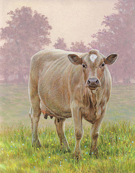 Grass Tree Digital Art - Brown Cow In Meadow Looking At Camera by Andrew Hutchinson