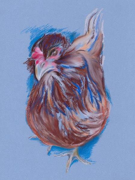 Pastel - Brown Easter Egger Hen by MM Anderson