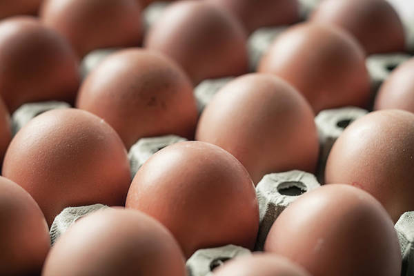 Compartments Photograph - Brown Eggs On Egg Carton, Close-up by Westend61