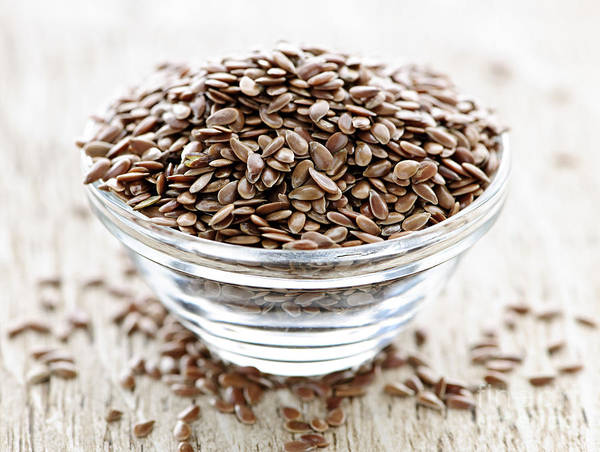 Omega Photograph - Brown Flax Seed by Elena Elisseeva