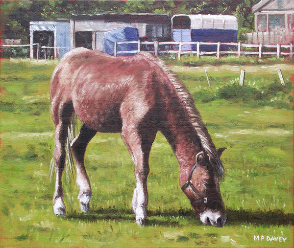 Painting - Brown Horse By Stables by Martin Davey