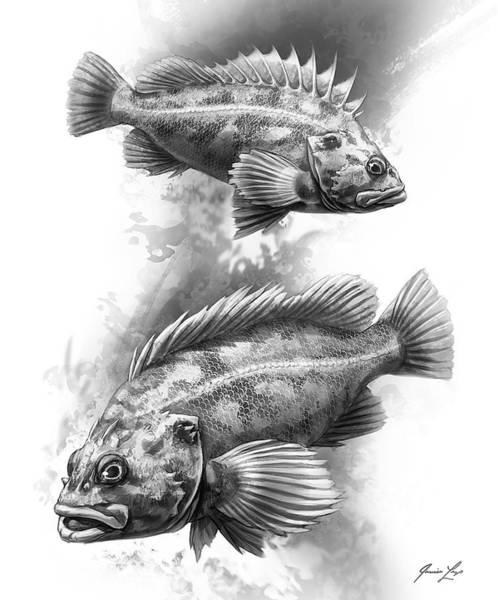 Pacific Digital Art - Brown Rockfish Pair by Javier Lazo