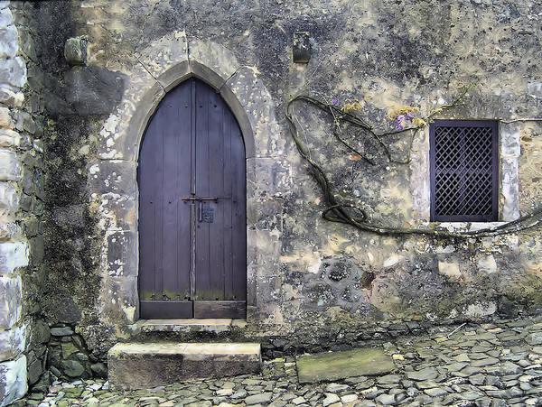 Brown Rustic Wood Door Of Medieval Europe Art Print