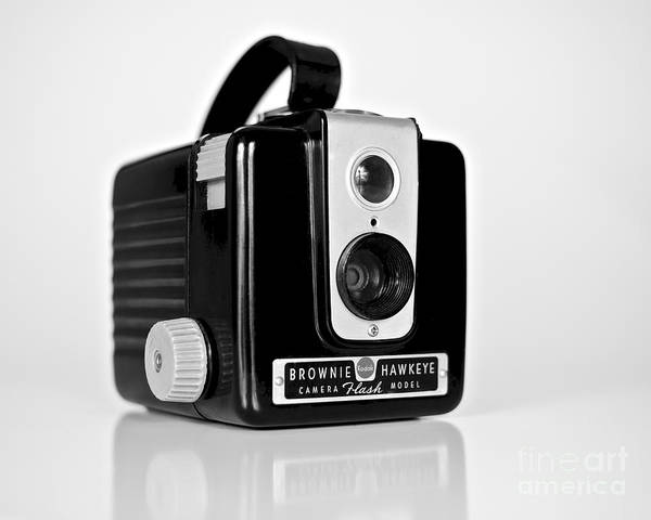 Photograph - Brownie Hawkeye by Mark Miller